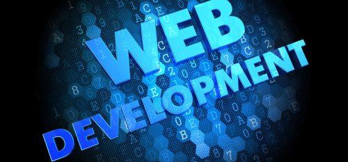 Website design software company in varanasi